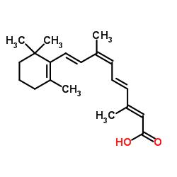 Pancreatin CAS 8049-47-6
