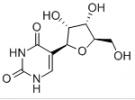 Pseudouridine CAS 1445-07-4