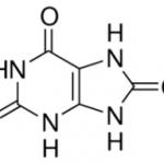 Uric Acid CAS 69-93-2