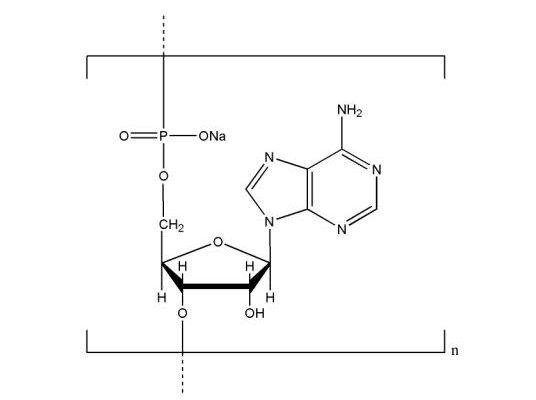 Polyadenosinic acid sodium salt CAS NNA-0009