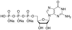 Guanosine-5′-triphosphate [GTP], Trisodium salt CAS 36051-31-7