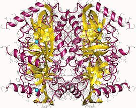 Pyrophosphatase Inorganic CAS 9024-82-2