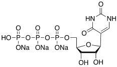 Uridine-5′-triphosphate Sodium Salt CAS 1175-34-4