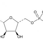 alpha,beta-methylene Adenosine 5′-triphosphate (sodium salt) CAS 1343364-54-4